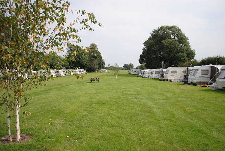 Burrows Park Dog Friendly Campsite Great Ouseburn Yorkshire
