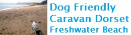 dog friendly caravan Freshwater Dorset
