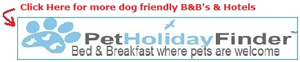 Find a dog friendly bed and breakfast