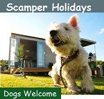 glamping with your dog in Gower