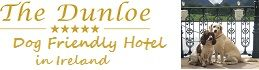 Pets welcome Hotel Ireland