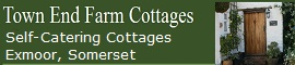 Cottage in Somerset pets are welcome
