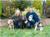Meet the Team at Pet Friendly Rentals, Here to help pet owners find suitable accommodation