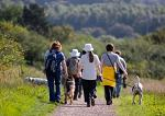 great dog friendly walks to choose from