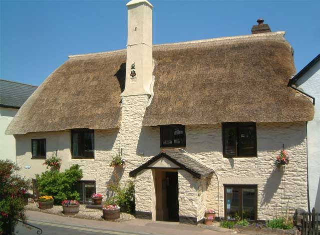 Myrtle Cottage Dog Friendly B And B Exmoor Somerset