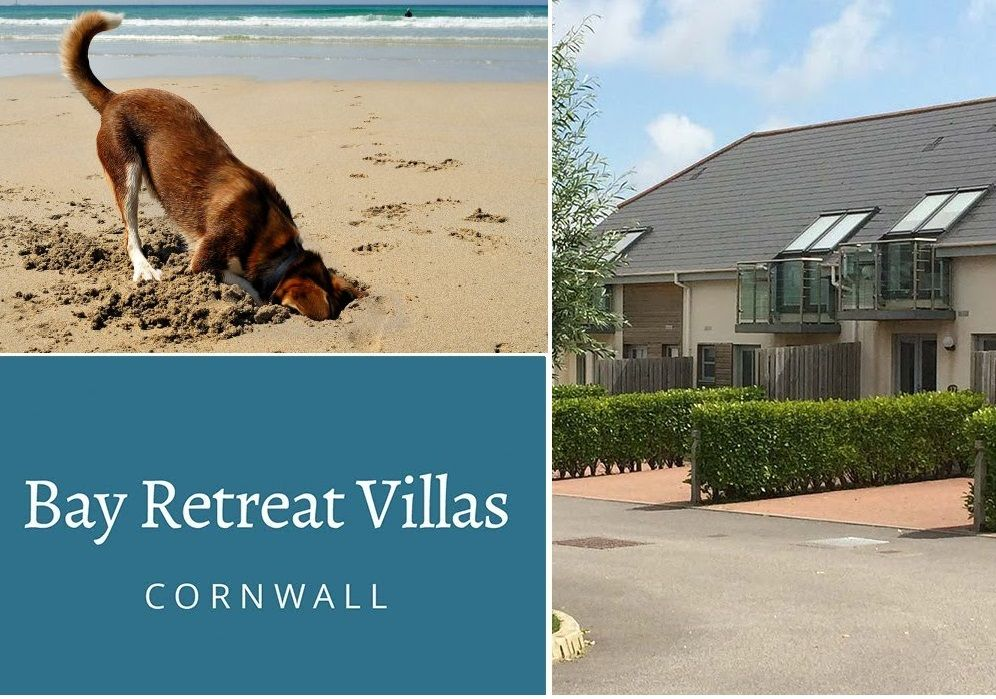 beach holidays with dogs -bayretreat